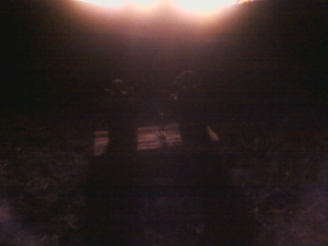 Sacred Fire Pic 4